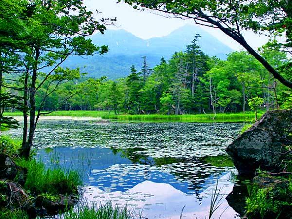 斜里町を巡る旅 知床五湖
